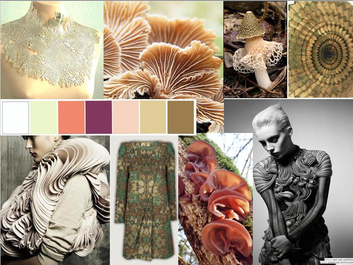 Fungi Fashion Moodboard Arts University Bournemouth
