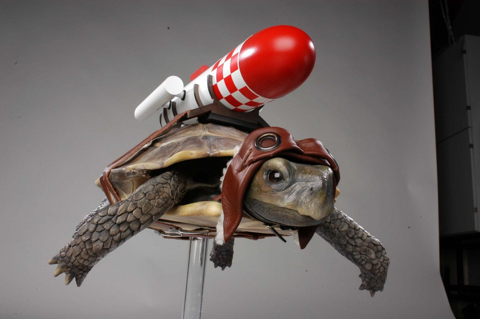 Model of a Tortoise with rocket on its back