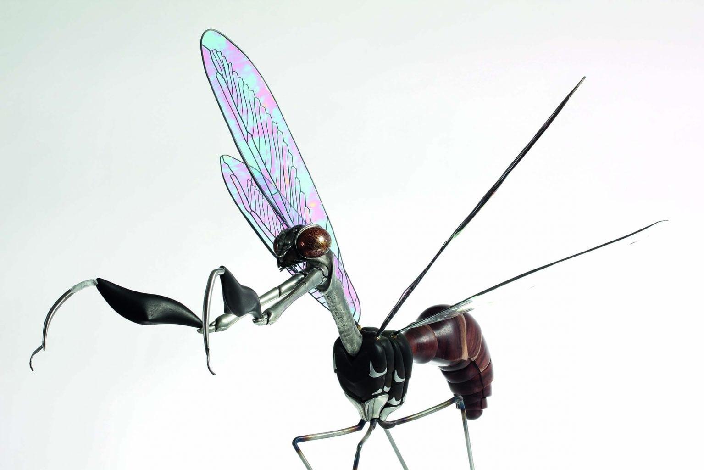 Mantedfly model