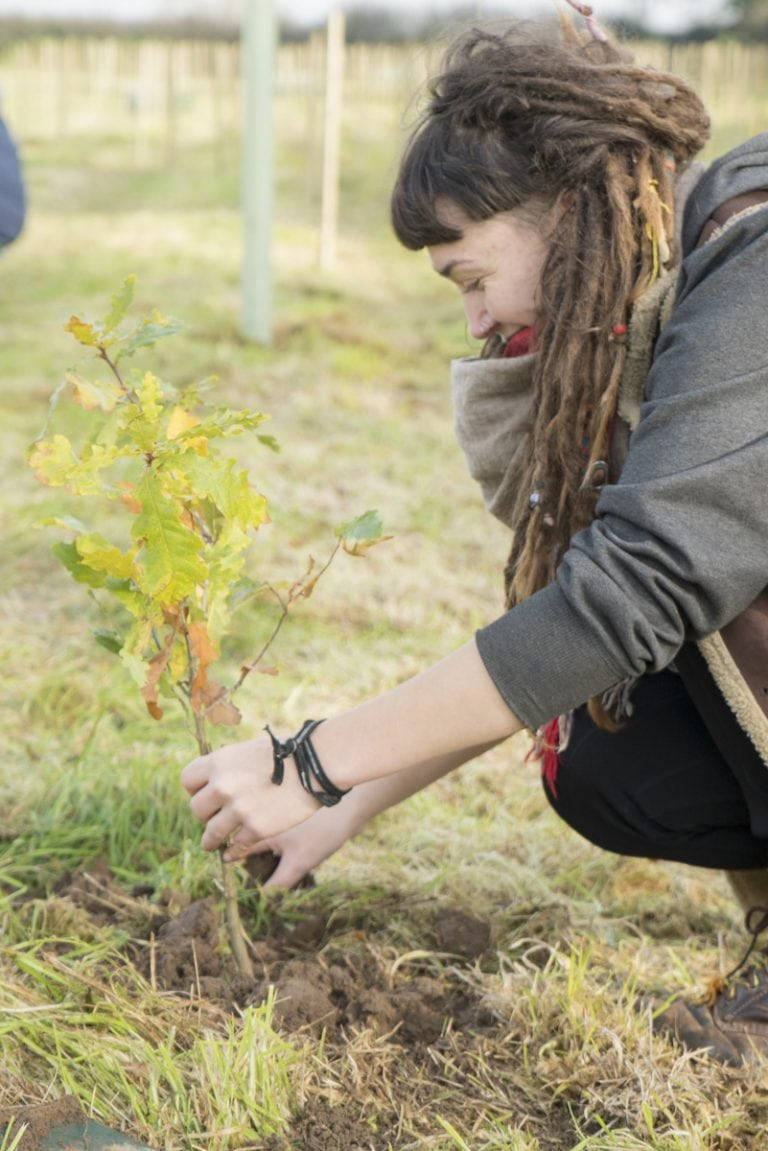Student planting tree as part of Student Union initiative