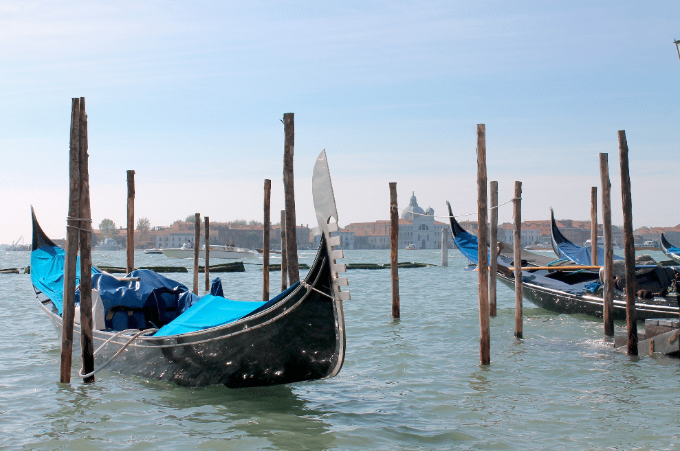 MA Architecture and MA Fine Art students to collaborate at Venice Biennale