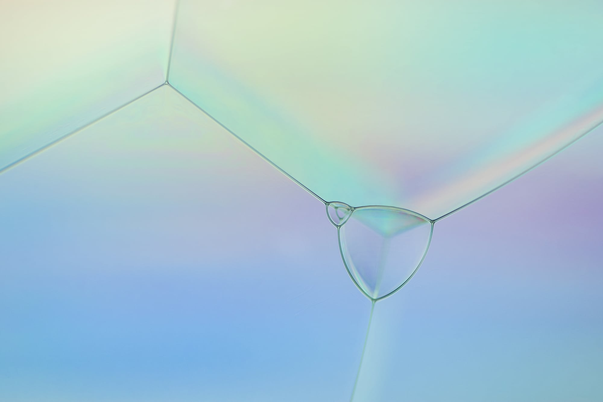 Photography alumna works with bubbles for art and science